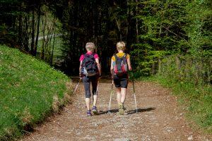 Beitragsbild zur Illustration - zwei Frauen beim Nordic Walking im Wald, aufgenommen von hinten